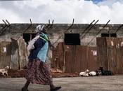 Dono simbolico Papa Francesco alla (Onu) aiutare popolazioni dell'Africa orientale superare carestia