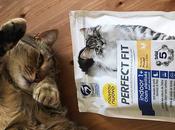 Perfect Fit: miei gatti scelgo Formula Total