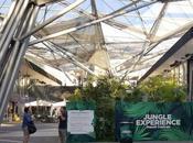 Napoli Centrale arriva Jungle Experience, un'oasi rilassante ingresso libero