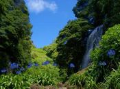 Azzorre: visita parco mulini Ribeira Caldeirões sull'isola Miguel