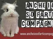 """""""Anche farti compagnia"""", campagna favore riconoscimento conigli come"""