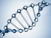 telomeri, preziose sequenze genetiche allungano vita