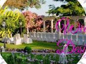 Wedding Planner Designer? Differenze consigli rendere unico vostro matrimonio Villa Valente