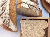 Pane alla segale lievito madre impasto caldo