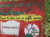 Nasce Calabria l'Orto Botanico Arcadia: cos'è come visitarlo