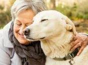 Declino cognitivo? animali domestici aiutano anziani