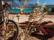 Rusty Koufonisia© Andrea Gracis PhotographyPortfolio:...