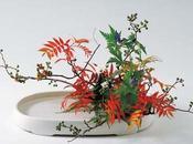 Buddha vaso fiori: giorni ikebana Milano
