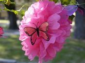festa delle farfalle stella