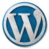 Pagine scritte con codice pulito aiutano il posizionamento: il trucco è usare un cms SEO friendly come WordPress.