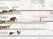 megafauna australiana estinse colpa dell'uomo?