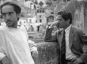 Pier Paolo Pasolini coltre primule
