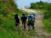cammino lungo Francigena della Sambuca