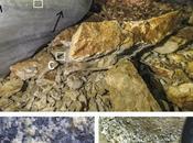 progetto (Cave's Cryosphere Climate) della CGEB Trieste primi risultati Canin