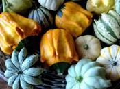tempo delle zucche: ricetta decorazione casa giardino