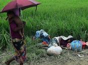 Ogni settimana 12mila bambini rohingya fuggono dalla Birmania, secondo l'Unicef
