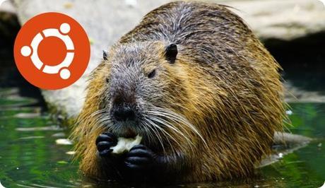 ubuntu-beaver