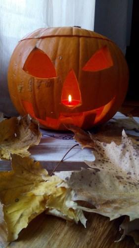 Quanto tempo dura la zucca di Halloween?