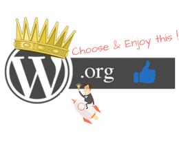 Wordpress.org è la scelta migliore da fare per creare un blog di successo e diventare blogger!