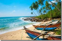 Un Capodanno nello Sri Lanka