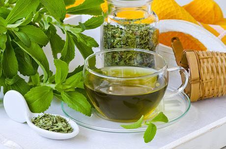 L'importanza della Stevia per prevenire il Diabete e altri 8 importanti articoli...
