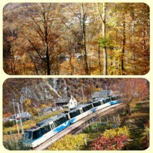 Il treno del foliage: alla scoperta dei colori autunnali