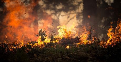 Emergenza incendi: nuove tecnologie dal Politecnico in supporto della Protezione Civile