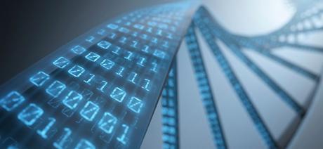 Hard disk a DNA