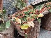 Aritzo, Sagra delle Castagne Nocciole, 28-29 Ottobre 2017