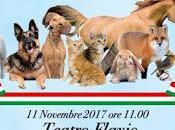 Roma, novembre 2017: Presentazione Movimento Animalista Roma
