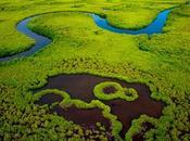 Niumi National Park, piccolo parco costiero
