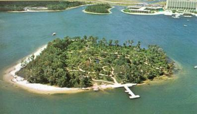 Discovery Island Aerial