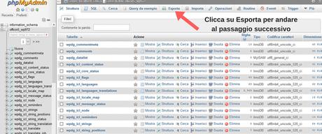 Database di WordPress composto da tabelle che vanno tutte selezionate ed esportate per finalizzare il backup del database di wordpress.