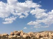 Come visitare Joshua Tree National Park (California) cosa vedere