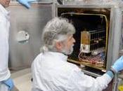 indagini scientifiche sulla stazione spaziale internazionale