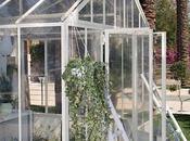 love greenhouse!