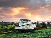 Pescatori, rischio centinaia licenziamenti scatta l'interpellanza urgente