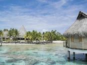 Polinesia sogno Tikehau, migliori atolli delle Tuamotu