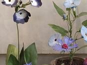 fiori piante tôle paint