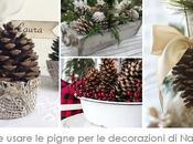 Blogmas Come usare pigne nelle decorazioni natalizie