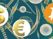 Bitcoin Bolla piuttosto Virus (benefico)...