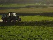 Bando Mipaaf: alla vendita terre coltivabili