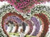giardino Pandora (J'accuse#2)