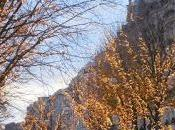 Parigi: brunch, sprunch soprattutto Gauguin