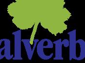 Valverbe: tisane sorso salute dalle montagne piemontesi