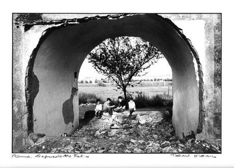 Gianni Rodari ⁞ L'albero dei poveri