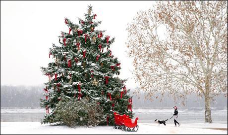 Auguri di Buon Natale 2017 da Digital-News.it e Digital-Forum.it