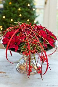 Stelle di Natale: decora tavola natalizia