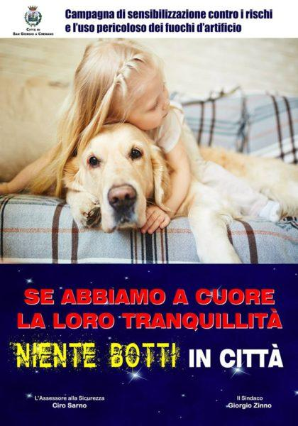 """Video. Botti """"killer"""" di Capodanno: i consigli utili per proteggere il nostro cane"""