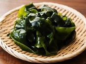Ricette vegane mare: proposte base alghe